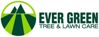 Ever Green Tree & Lawn Care
