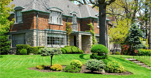 Ever Green Tree and Lawn Care, Lancaster, PA